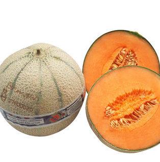 lorenzini melone 1